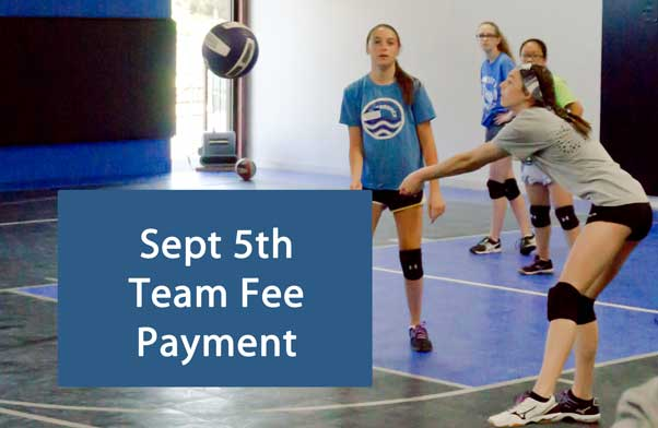 north kansas city eclipse volleyball club kc - september team fee payment