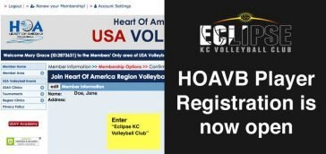 hoavb player registration